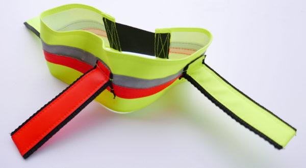 Hundehalsband mit Fahnen